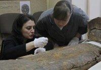 В Москве покажут египетские древности из фондов Национального музея РТ