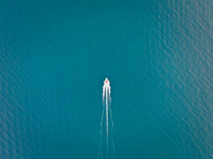 Дезоксигенация, говорят исследователи, угрожает крупным видам, включая марлина, тунца, рыбу-меч и акул. Сокращение их численности способно повлиять на жизни сотен миллионов человек, зависящих от рыбного промысла