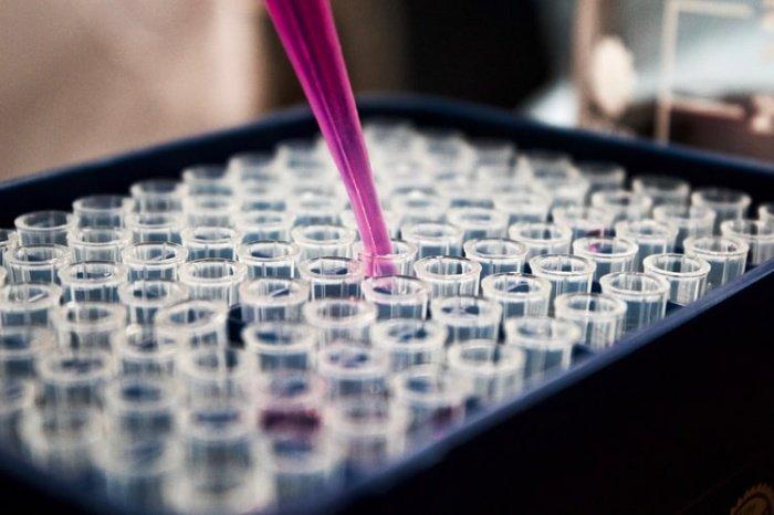 Ученые намерены продолжить исследования, чтобы создать системы искусственного интеллекта для лучшего прогнозирования риска появления рака