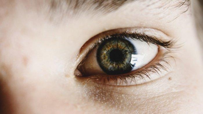 Симптомом меланомы хориоидеи глаза может оказаться либо такое нарушение зрения, как мерцание, либо небольшое ухудшение зрения, которому больной и вовсе не придаст значения, подумав, что ему просто нужны очки