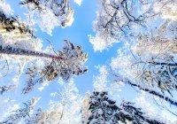 Синоптик сообщил о предстоящих волнах холода в России