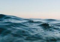 Тысячи загадочных объектов обнаружены в океане
