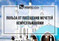 Главная причина, почему немусульманам тоже можно посещать мечети