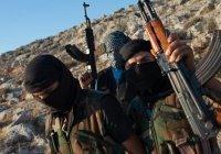 ИГИЛ заподозрили в подготовке вторжения в Центральную Азию