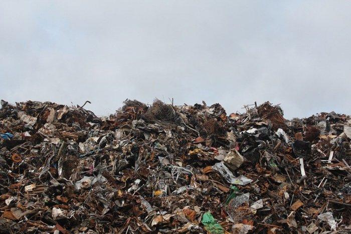 Документ также устанавливает обязательную экологическую экспертизу мусоросжигательных мощностей