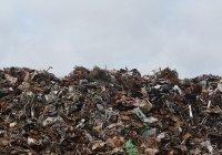 В России запретили сжигать непереработанные отходы