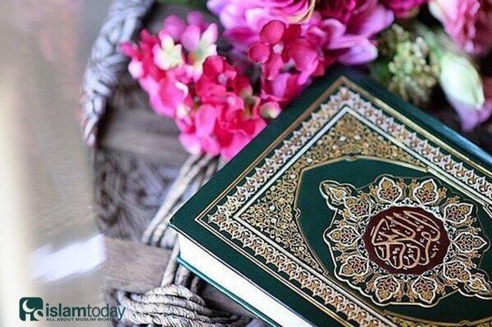 Истории, за которыми мудрость Аллаха