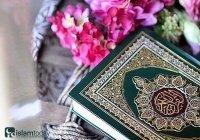 5 избранных историй из Корана