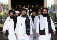 В МИД рассказали, в чем совпадают интересы России и «Талибана»