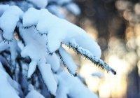 В Казани в новогоднюю ночь ожидается снегопад