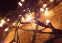 Специалисты предупредили о вреде светодиодных гирлянд