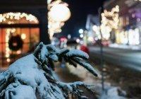 Гидрометцентр сообщил об аномально теплом январе