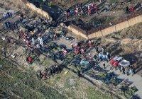 Стало известно гражданство пассажиров разбившегося в Иране лайнера