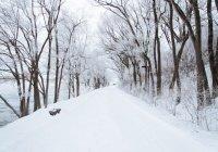 Названы российские регионы, где в январе ожидается аномально теплая погода