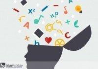 Как спастись от ухудшения памяти?