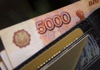 Названо число россиян, ожидающих роста зарплаты в 2020 году