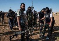 Король Иордании заявил о «возрождении» ИГИЛ в Ираке