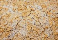 Предсказана гибель тысяч людей из-за изменения климата