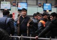 Власти Петербурга потратят полтора миллиона рублей на мероприятия для мигрантов