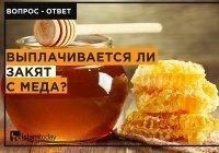 Нужно ли выплачивать закят с меда?