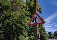 Установлена связь между скоростью ходьбы и интеллектом человека