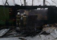 Десять граждан Узбекистана погибли при пожаре в Томской области