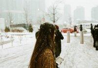 Синоптики объяснили «отсутствие» заморозков в январе