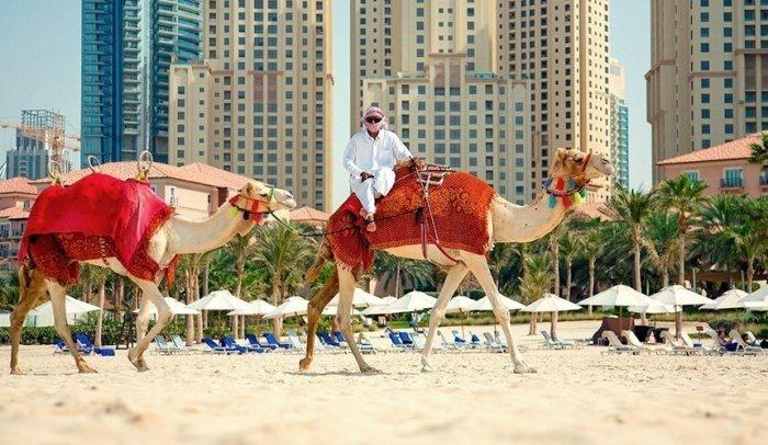 Жители Дубая оценили уровень своего потребительского счастья.