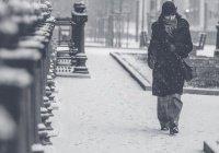В Гидрометцентре рассказали, почему нормальной погоды становится все меньше
