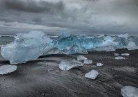 Неизвестные древние вирусы обнаружены в тающих льдах