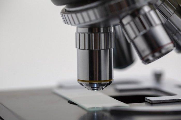 Препарат может замедлить процесс нейродегенерации на ранних стадиях