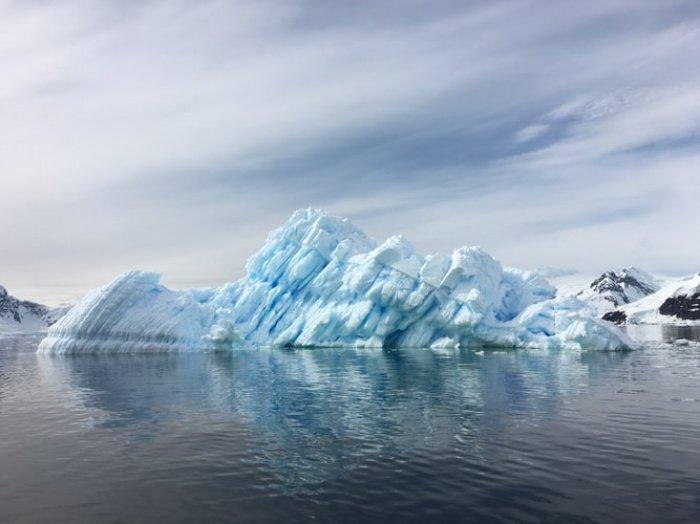 Мероприятие проходило в реке, которая возникла из-за подтаивания ледников в Антарктиде