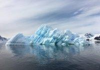 Мужчина совершил уникальный заплыв в Антарктиде