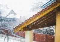 Стало известно о последствиях бесснежной зимы