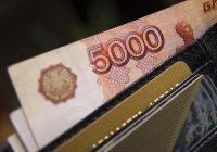 Жители России назвали зарплату своей мечты
