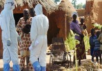 Около 30 человек скончались в Нигерии от лихорадки Ласса