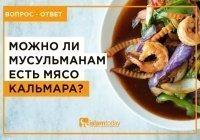 Можно ли мусульманам есть мясо кальмара?