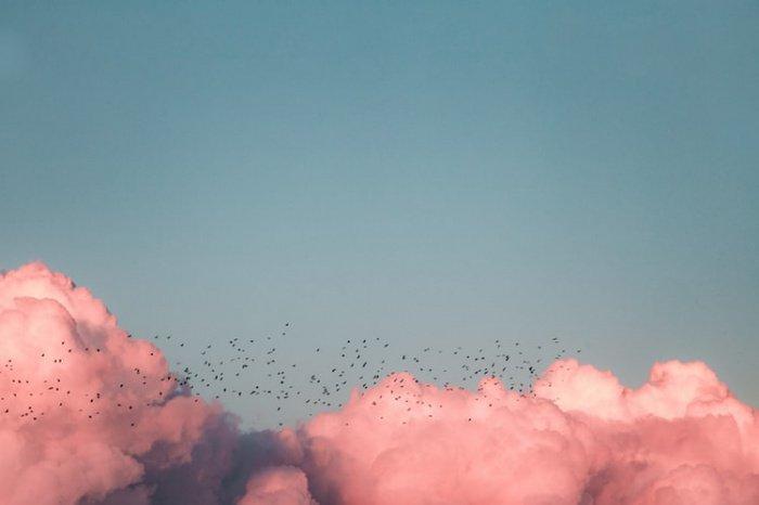 Потенциальная аллергенность фрагментов спор объясняет, почему у некоторых людей во время дождей возникают приступы астмы