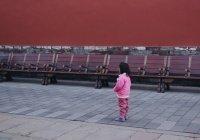 В России остановлен прием туристических групп из Китая