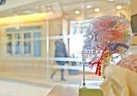 Житель США 10 лет жил с червем в мозге