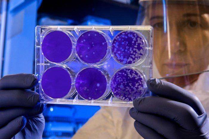 Основным источником инфекции по-прежнему являются уже зараженные новым типом коронавируса люди