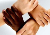Мусульмане и евреи Европы объединятся в борьбе с расизмом