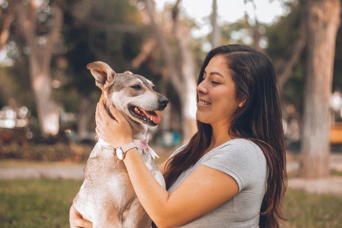 При этом собаки продолжали странно себя вести, пока их владелица не завершила третий курс химиотерапии