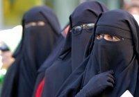 Египетский университет запретил сотрудницам носить никаб