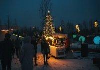 Январь в Москве оказался самым темным за 20 лет