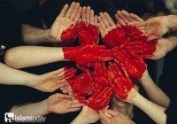 """""""Виды сердец"""", упомянутые в Коране: почему иногда наши сердца превращаются в камень"""