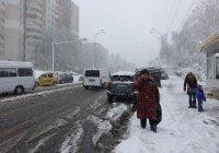 Россиянам пообещали раннюю весну