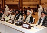 США и «Талибан» могут подписать мирное соглашение в ближайшие дни