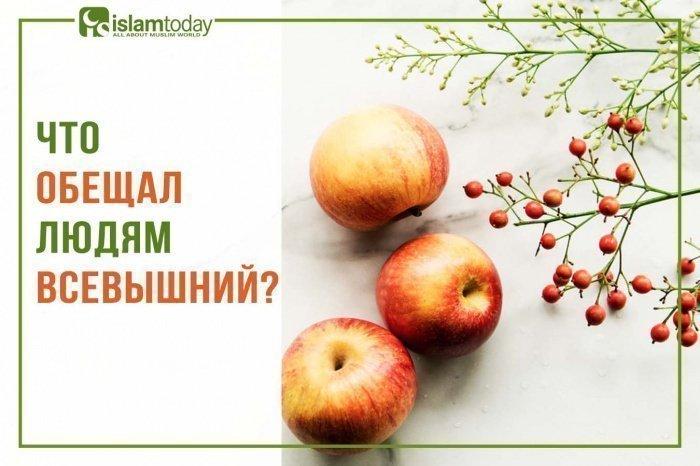10 причин, почему люди принимают ислам