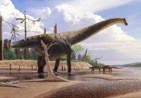 Ученые открыли нового необычного динозавра